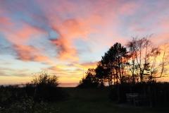 Lyset på Odden er magisk - her fra en dramatisk solnedgang med Sejerøbugten bag træer en november aften.