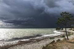 Det trækker op til storm en august dag i 2018. Dårligt vejr plejer dog ikke at rammer Odden.